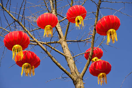 red sky: Red lanterns hanging on the tree Stock Photo