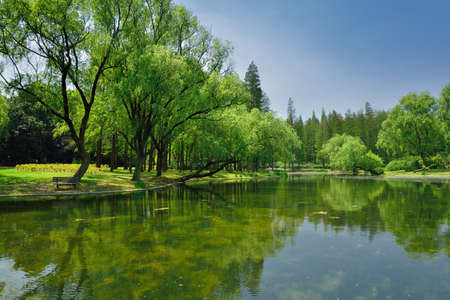 distinct: Wetland Park