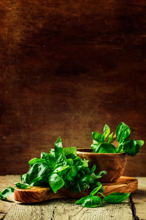 Green basil on a cutting board, rustic style, selective focus