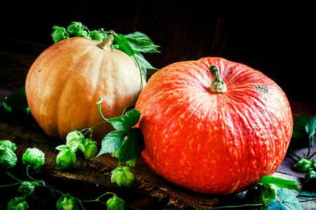 Halloween pumpkins, dark wood background with cones and hop vine, selective focus