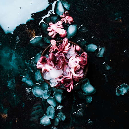 Small red prepared octopus on crushed ice, wet black background, top view
