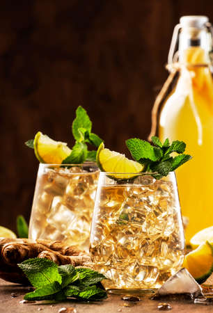 Golden Ginger Ale Beer Cocktail with Lime, Lemon and Mint in glaass on wooden table, copy space Reklamní fotografie