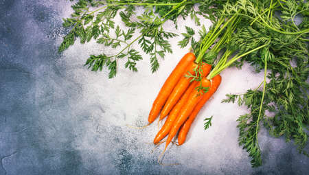 Fresh carrots bunch on gray stone background. Top view frame with copy space