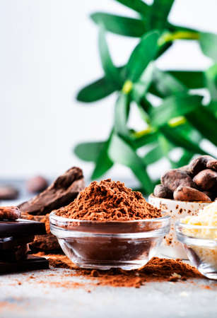 Various organic cocoa products: beans, powder, butter, dark chocolate, grated cocoa on gray table background Banque d'images