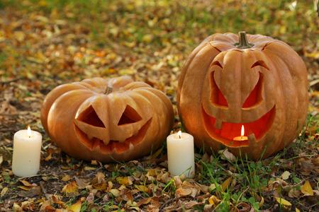 Halloween pumpkins in autumn leaves photo