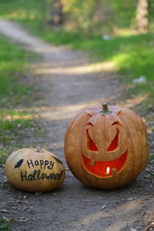 Halloween pumpkin on footpath in wood photo