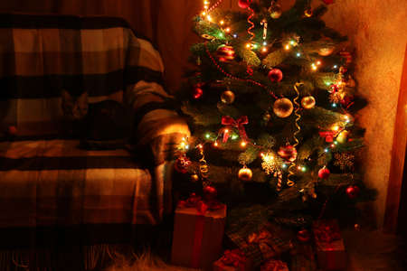 Christmas Tree and christmas gift boxes in the interior photo