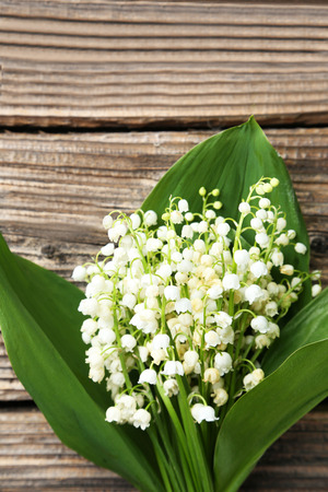 mayflower: Lily of the Valley with leaves on brown wooden background