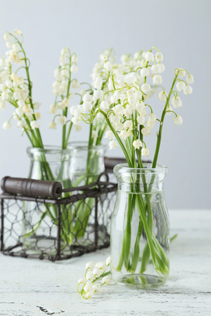 mayflower: Lily of the Valley in bottles on white wooden background Stock Photo