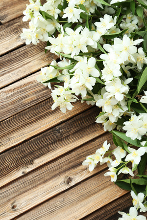 redolence: White flowers of jasmine on brown wooden background