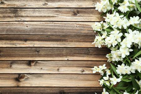 flower flora: White flowers of jasmine on brown wooden background