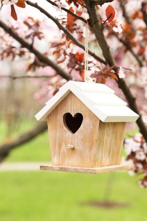 nesting: Nesting box hanging on the tree