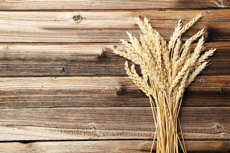 ear of corn: Ears of wheat on a brown wooden background