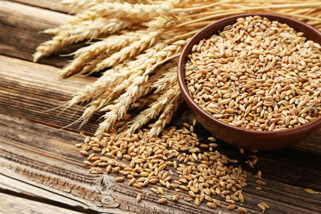 wheat background: Ears of wheat and bowl of wheat grains on brown wooden background