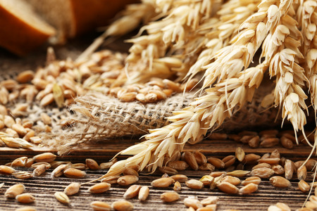 Ears of wheat and wheat grains on brown wooden background