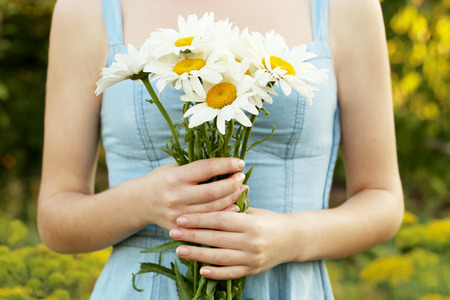 Woman holding bouquet of chamomile flowers, ourdoor 스톡 콘텐츠