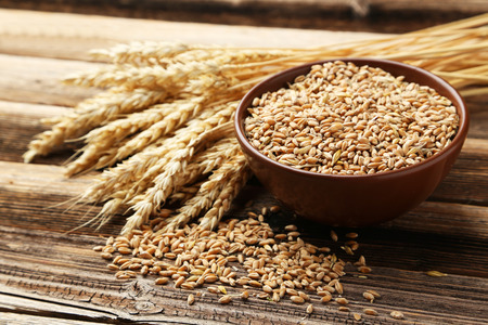 Weizenähren und Schüssel Weizenkörner auf braunen hölzernen Hintergrund