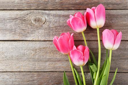 木製のグレーの背景にピンクのチューリップ 写真素材