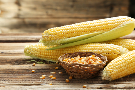 Corns on a brown wooden background 스톡 콘텐츠