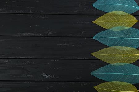 slight: Skeleton leafs on black wooden background