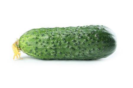 cuke: Fresh cucumber isolated on white Stock Photo