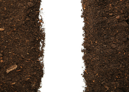 dirt background: Soil on white background Stock Photo