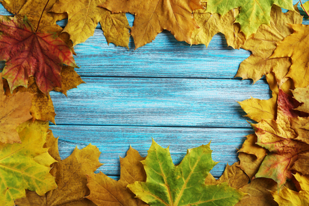 autumn leafs: Autumn leafs on a blue wooden table Stock Photo