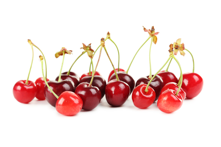 burgundy colour: Ripe cherries isolated on a white background Stock Photo
