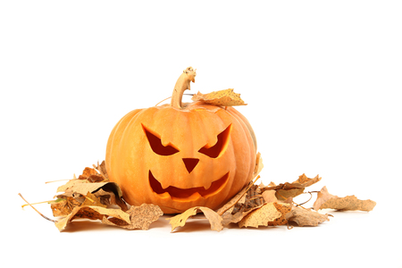 Halloween pumpkin with dry leafs isolated on a white Stock Photo