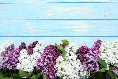 Blooming lilac flowers on a blue wooden table Stock Photo