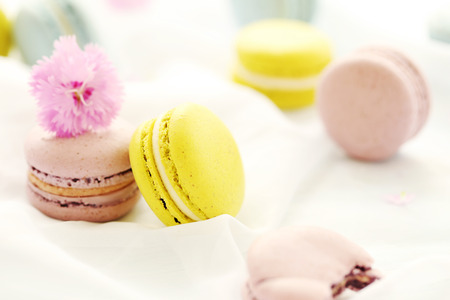 white cloth: French colorful macarons on a white cloth