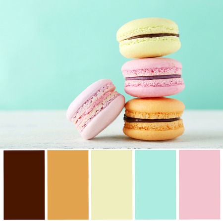 paletas de caramelo: French macarons on white wooden background with color palette