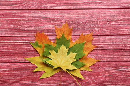 autumn leafs: Autumn leafs on red wooden table