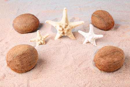 14ca6bb9d36  83554371 - Coconuts with starfish on the beach sand