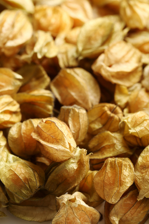 Ripe and sweet physalis background, close up Stock Photo