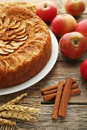 Apple cake in plate on grey wooden table