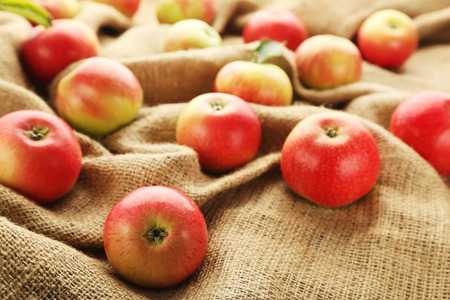 Ripe and sweet apples on sackcloth