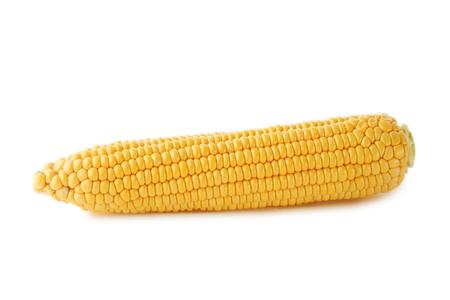 Sweet corn isolated on white
