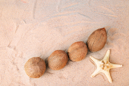 45c8fa4dcba  92066395 - Coconuts with starfish on the beach sand