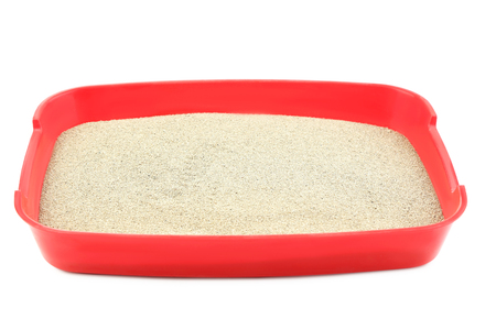 Red toilet tray with sand isolated on white