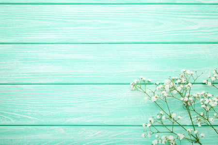 White gypsophila flowers on mint wooden table