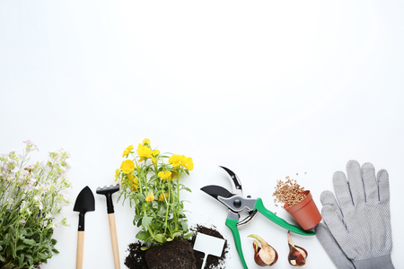 Garden tools with flowers on white background
