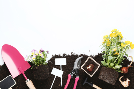 Garden tools with flowers on the ground