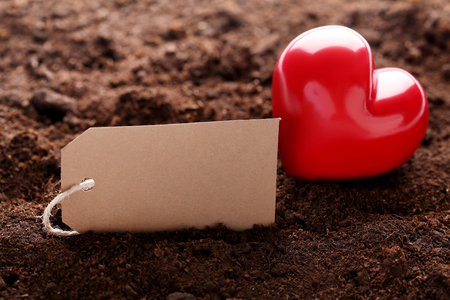 Red heart and blank card on ground