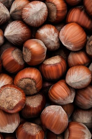 Background of ripe hazelnuts