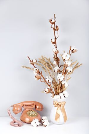 Cotton flowers in vase with retro telephone on grey background
