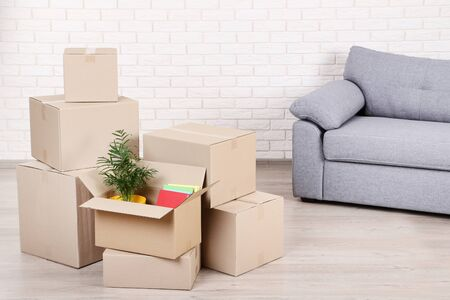 Cardboard boxes with green plant and books on brick wall background