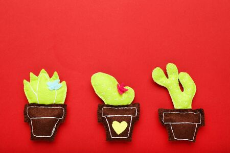 Different soft toy of cactuses on red background 版權商用圖片