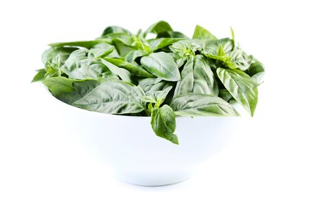 Green basil leafs in bowl isolated on white background