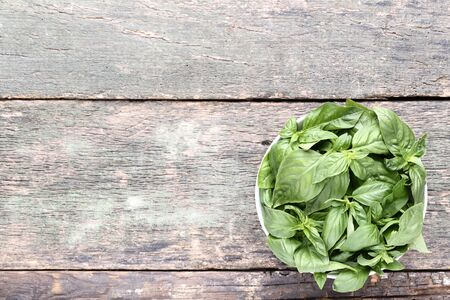 Green basil leafs in bowl on grey wooden table
